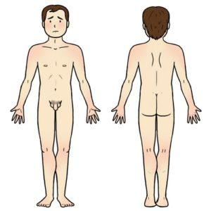 Illustration aide au langage document orthophonie logopédie corps humain homme