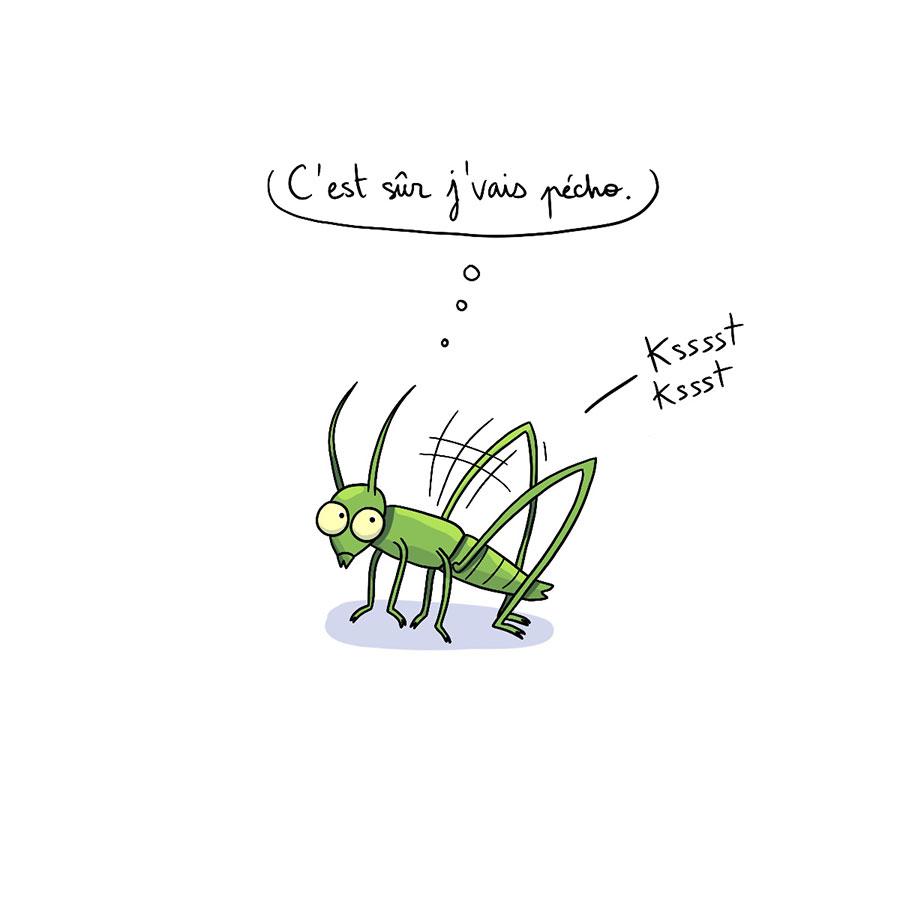 bd humour illustration marie gib